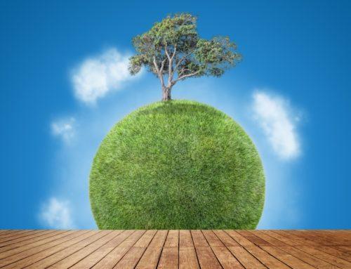 Progetti a tutela dell'ambiente, uscite le nuove call europee LIFE