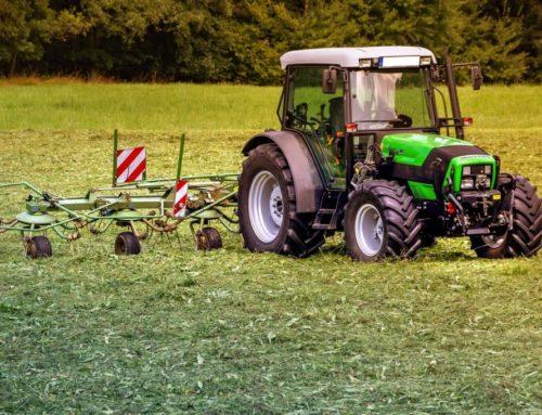 Agricoltura, il nuovo bando di Regione Marche per i G.O